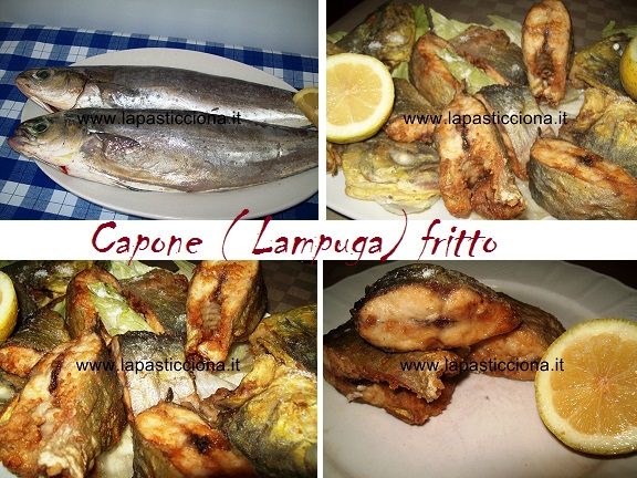 Capone ( Lampuga) fritto