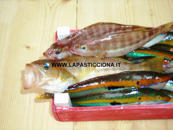 Pesce misto per zuppa