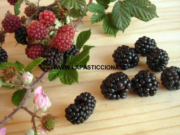 Gelatina di frutti di bosco
