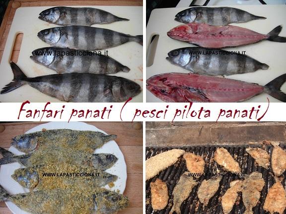 Fanfari panati ( pesci pilota panati) 2