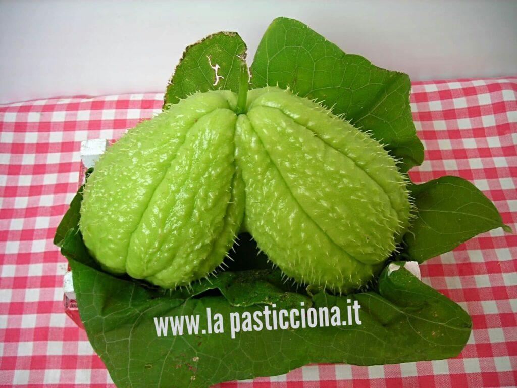Zucchina centenaria (Chayote)